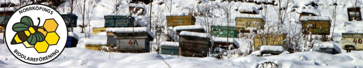 Norrköpings Biodlareförening